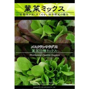 西洋野菜種子 メスクランサラダ用 葉菜13種ミックス [Life with Green]|life-with-green