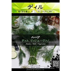ハーブ種子 ディル ヴィジェーヴァノ   サーモンのマリネに必須 ピクルス [Life with Green] life-with-green