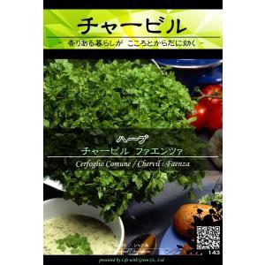 ハーブ種子 チャービル ファエンツァ [Life with Green] life-with-green