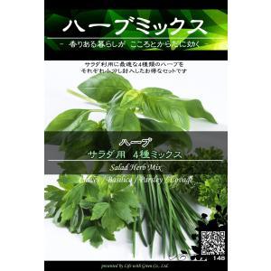 ハーブ種子 サラダミックス (チャイブ / バジル / パセリ / ロベジ) [Life with Green] life-with-green