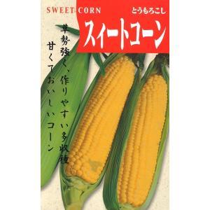 定番野菜種子 とうもろこし スイートコーン | 草勢強い 作りやすく多収穫 甘くておいしい [春] [直売限定] [Life with Green]|life-with-green