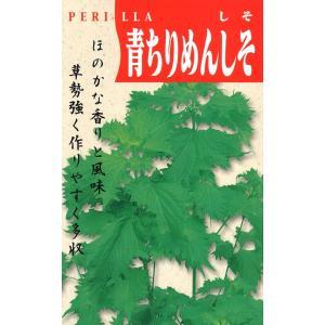 定番野菜種子 しそ 青ちりめんしそ [春][直売限定][Life with Green]|life-with-green