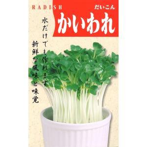 定番野菜種子 だいこん かいわれ [春][直売限定][Life with Green]|life-with-green