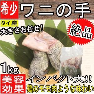 ワニの手 約1kg クール便送料別 大きさお任せ タイ産 鰐肉 インスタ映え抜群!!