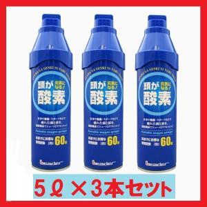 3個セット 頭が元気になる! 日進医療器 携帯酸素 酸素缶 酸素ボンベ 酸素スプレー 5リットル lifefusion-shop