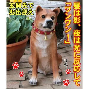 ワンワン リキ (明暗センサー内蔵犬型玄関番) lifeharmony
