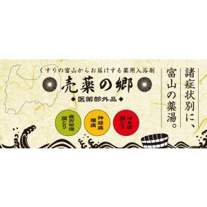 薬用入浴剤 効能別3種 6包セット 冷え性/腰痛/疲労回復/ 温浴効果 日本製 ボディケア バス用品 美容 おしゃれ sgmy|lifemaru