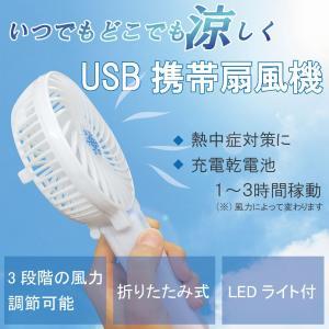 持ち運びOK ミニ扇風機 充電可能 LEDライト付き 携帯ミニミストファン 小型 ハンディ扇風機 冷感スプレー 熱中症対策 Fantasuto lifemaru