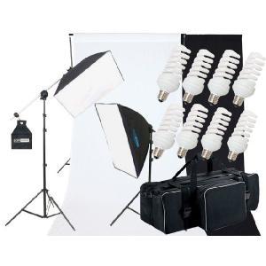 撮影機材 撮影照明 「ヘアサロン撮影キット」蛍光灯照明2灯セット+背景付|light-grafica