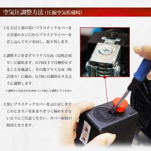 予約販売 エアーコンプレッサー 30L 100V 静音 型 オイルレス エアーツール付 エアープレッシャーゲージ他 日本語説明書付 送料無 DAR3000 lightingworld 09