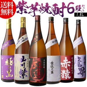 焼酎 芋焼酎 セット 飲み比べ 詰め合わせ 送料無料 紫芋焼...