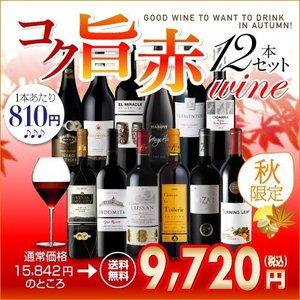 秋限定!厳選コク旨赤ワイン12本セット 【送料無料】