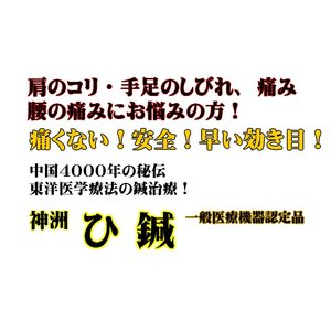 ひ鍼 30針 神洲 ひ鍼(ヒシン) ひしん 皮内針 首 肩 腰 針治療 日本薬興正規品 普通郵便送料無料|lilaqueen|03