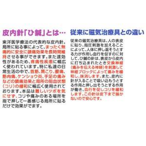 ひ鍼 30針 神洲 ひ鍼(ヒシン) ひしん 皮内針 首 肩 腰 針治療 日本薬興正規品 普通郵便送料無料|lilaqueen|06