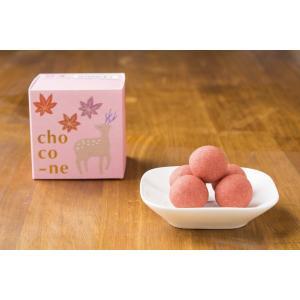 choco-ne ショコネ いちご(あすかルビー)|lilionte