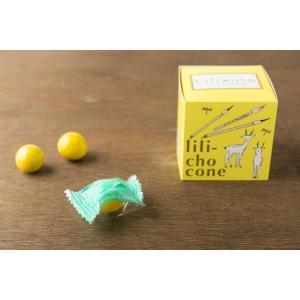 lili-chocone リリショコネ パイナップル|lilionte
