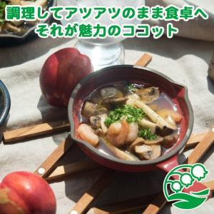 グラタン皿 おしゃれ ココット皿 洋食器 美濃焼 トリコロール・グリル スキレット型ココット レッド スズラン|lilly2016