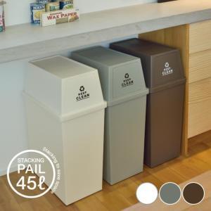 スタッキングペール 45L ダストボックス ごみ箱 おしゃれ 清潔 ふた付き ゴミ分別 ゴミ箱 フタ付き 小型 コンパクト 日本製 ペールカラー 新生活 LFS-761|lily-birch