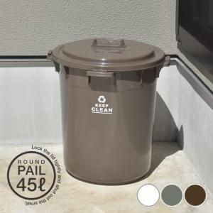 ラウンドペール 45L 丸型 ダストボックス ごみ箱 おしゃれ ふた付き ゴミ分別 ゴミ箱 フタ付き 円形 オムツ入れ 生ゴミ 日本製 新生活 LFS-765|lily-birch