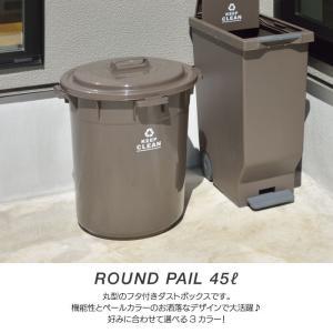 ラウンドペール 45L 丸型 ダストボックス ごみ箱 おしゃれ ふた付き ゴミ分別 ゴミ箱 フタ付き 円形 オムツ入れ 生ゴミ 日本製 新生活 LFS-765|lily-birch|02