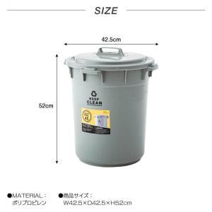 ラウンドペール 45L 丸型 ダストボックス ごみ箱 おしゃれ ふた付き ゴミ分別 ゴミ箱 フタ付き 円形 オムツ入れ 生ゴミ 日本製 新生活 LFS-765|lily-birch|04