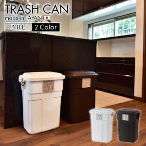 トラッシュカン 30L ダストボックス ゴミ箱 ごみ箱 屋外 屋内 スリム リビング シンプル 蓋つき フタ キッチン 生ゴミ オムツ 新生活 一人暮らし LFS-934|lily-birch