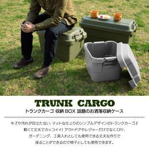 トランク カーゴ 30L コンテナ 収納ケース フタ付き 収納ボックス フタ付き コンテナボックス トランクボックス アウトドアケース BBQ キャンプ 男前 TC-30 lily-birch 03