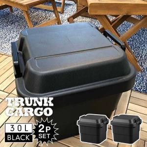 トランクカーゴ 30L BLACK ブラック 2個セット コンテナ 収納ケース フタ付き 収納ボックス トランクボックス アウトドア キャンプ 大容量 男前 黒 TC-30BK-2 lily-birch