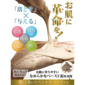 LUMIAS ルミアス クレマリンフェイスウォッシュ 100g 洗顔 スキンケア クレイ 泥パック 洗顔料 ロイヤルビオサイト配合 プラセンタ|lily-birch|02