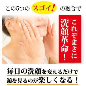 LUMIAS ルミアス クレマリンフェイスウォッシュ 100g 洗顔 スキンケア クレイ 泥パック 洗顔料 ロイヤルビオサイト配合 プラセンタ|lily-birch|13