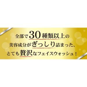 LUMIAS ルミアス クレマリンフェイスウォッシュ 100g 洗顔 スキンケア クレイ 泥パック 洗顔料 ロイヤルビオサイト配合 プラセンタ|lily-birch|15