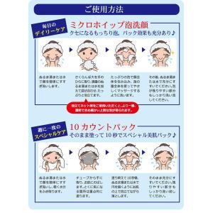 LUMIAS ルミアス クレマリンフェイスウォッシュ 100g 洗顔 スキンケア クレイ 泥パック 洗顔料 ロイヤルビオサイト配合 プラセンタ|lily-birch|16