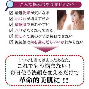 LUMIAS ルミアス クレマリンフェイスウォッシュ 100g 洗顔 スキンケア クレイ 泥パック 洗顔料 ロイヤルビオサイト配合 プラセンタ|lily-birch|04