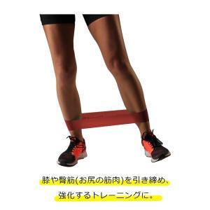 セラバンド TheraBand セラバンドループ レッド 赤 ミディアム Lサイズ 円周90cm トレーニングチューブ エクササイズバンド LINDSPORTS リンドスポーツ|lindsp|02