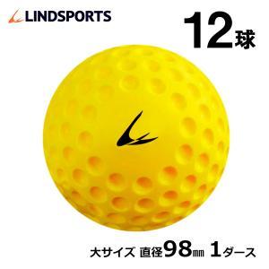 ディンプルボール 大 1ダース 12球入 野球 ソフトボール バッティング トレーニングボール 練習用 LINDSPORTS リンドスポーツ|lindsp