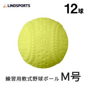 ◆お待たせしました! 前回、入荷後即完売のM号球が再入荷。 安心のリンドスポーツオリジナル! 価格は...