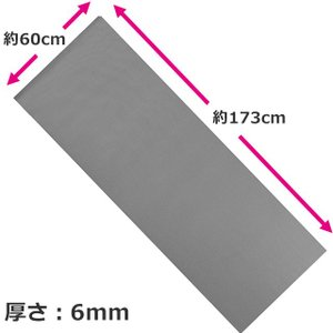 LINDSPORTS ヨガマット(厚さ6mm) グレイ *メッシュバッグ付|lindsp