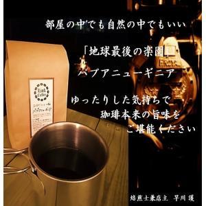 コーヒー豆 珈琲豆 200gバランス良い 甘み感じる  パプアニューギニア  自家焙煎|link-coffee
