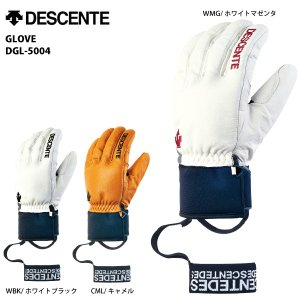 15-16 DESCENTE (デサント) 【グローブ/限定商品】 GLOVE (グローブ) DGL-5004|linkfast