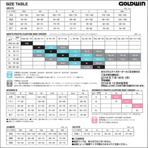 16-17 GOLDWIN(ゴールドウィン)【最終在庫処分】 Shiny Jacket(シャイニー ジャケット)G11610P【スキーウェア】|linkfast|04