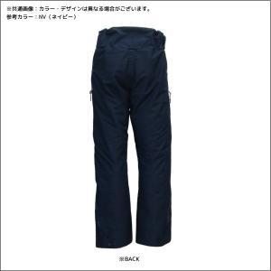18-19 PHENIX(フェニックス)【在庫処分/パンツ】 Spray 2L Insulation Pants(スプレー 2レイヤーInsパンツ)PA872OB23【スキーパンツ】 linkfast 02