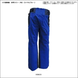 18-19 PHENIX(フェニックス)【在庫処分/パンツ】 Phenix Team 3-D Pants(フェニックスチーム3Dパンツ)PF872OB03【スキーパンツ】 linkfast 02
