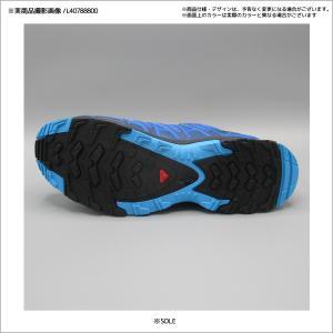 SALOMON(サロモン)【2019/マウンテントレイル】 XA PRO 3D (XA プロ 3D)【トレイルランニング/ウォーキング】 linkfast 15