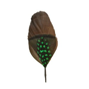 帽子の羽根飾りJ/茶(緑ドット・差し色ブラック)|lion-do