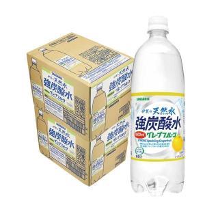 炭酸水 2ケース送料無料 サンガリア 伊賀の天然水炭酸水 グ...