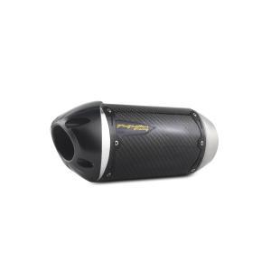 F3T/F3LTD用 TWO BROTHERS RACING スリップオンマフラー STDカーボン仕様 (競技用)SPYDER|lirica-store