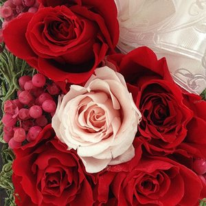 プリザーブドフラワーの結婚祝いローズの贈り物送料無料 イメージ5