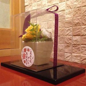 なごみ/敬老の日/誕生日/母の日/お祝/お正月のお飾りに イメージ5