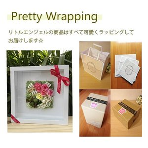 壁掛けフレーム カーネーション 母の日の贈り物 lpm0057 イメージ6