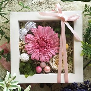 プリザーブドフラワー ガーベラ 壁掛け フレーム プレゼント ピンク ミニフレーム ギフト lpm0060 イメージ1